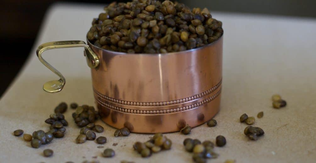 french lentil stew recipe
