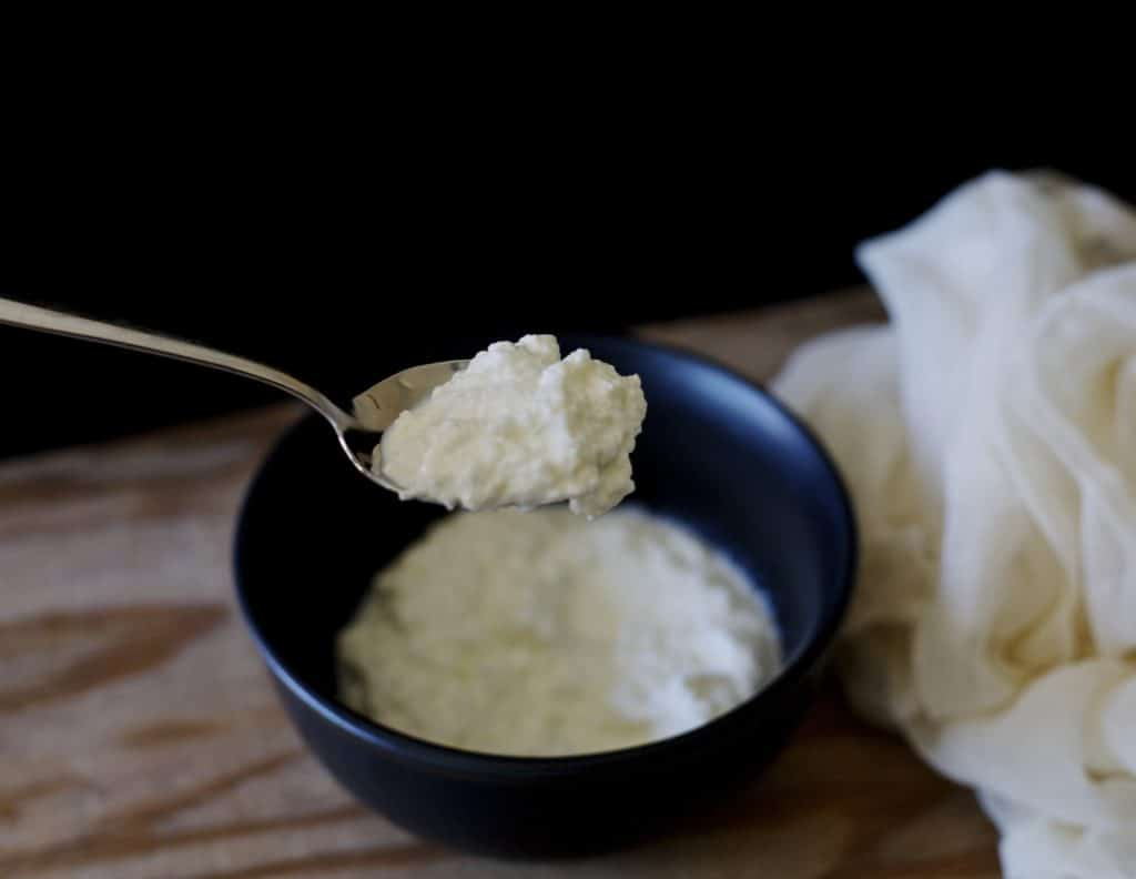 homemade ricotta cheese2