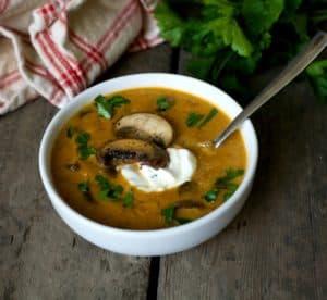 hungarian mushroom soup2