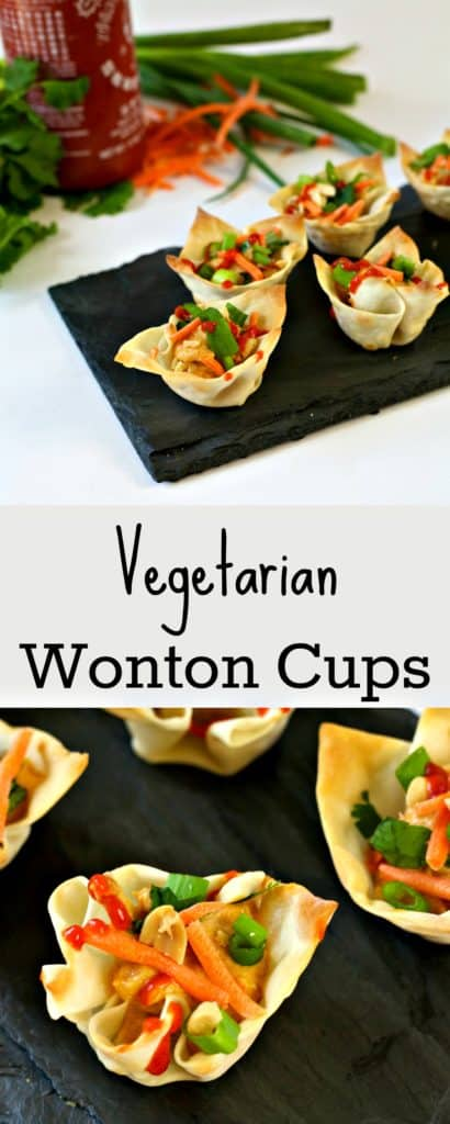 These Vegetarian Wonton Bites combine creamy hummus and fresh vegetables in an easy to eat, crispy wonton cup, creating the perfect party appetizer