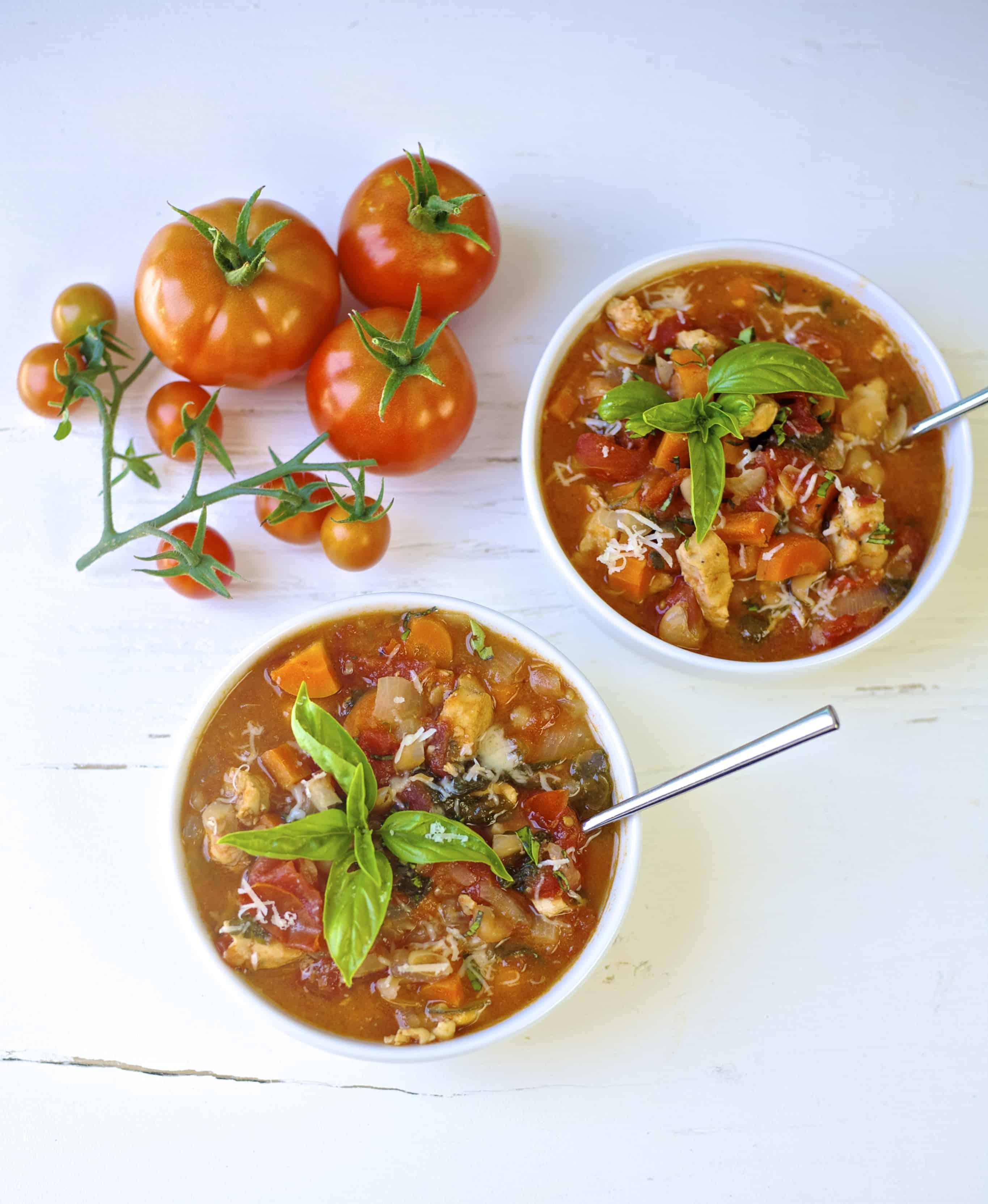summer garden chicken stew 1